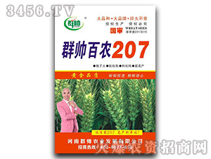 百农207-小麦种子-群帅农业
