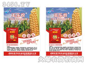 玉米高产增产套餐(单页)