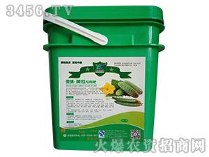 黄瓜专用肥-源盛佳禾-奥纳农业