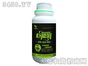高效缓释液体氮肥-巨能氮-普正农业