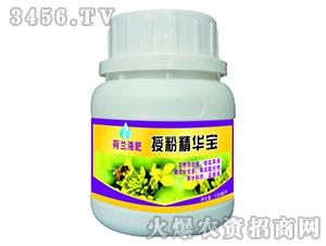 授粉精华宝-荷兰液肥