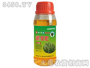 小麦灌浆肥-扩叶生物