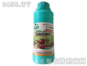PBO硅酸盐菌剂-辅禾佳-洪荒农人