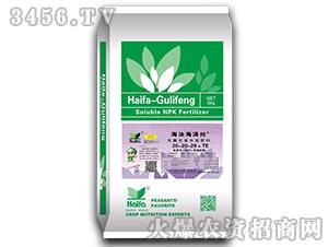 大量元素水溶肥料20-20-20+TE-海法海泽拉