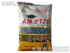 禾博士126-玉米种子-商都种业
