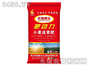 小麦返青肥-肥动力-宏福鲁化