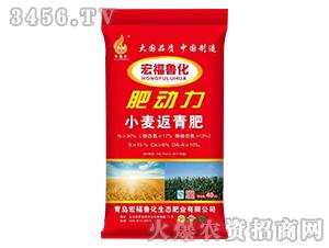40kg小麦返青肥-肥动力-宏福鲁化