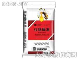 豆肽酶素-地专家