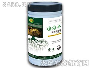 碳酶海藻酸浓缩生根粉-