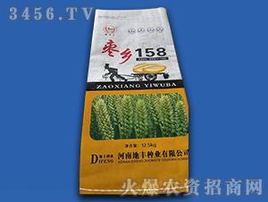12.5kg枣乡158-小麦种子-地丰种业