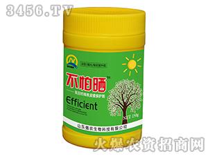 抗日灼有机皮膜保护剂-强农