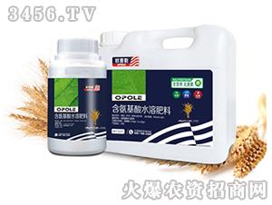 小麦需配含氨基酸水溶肥料-欧普勒