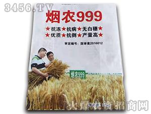 烟农999-小麦种子-种旺农业