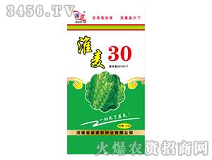 淮麦30小麦种子-国奇-家家旺