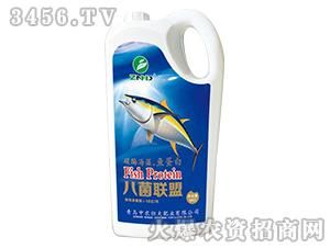 5kg碳酶海藻・鱼蛋白-八菌联盟-中农恒大