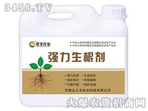 强力生根剂-永丰农业