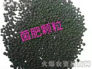 菌肥-沃鲁特