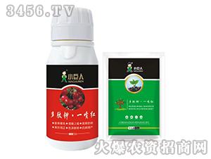 多肽钾·一喷红-小巨人