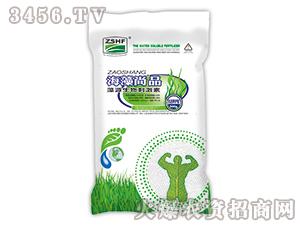 藻源生物刺激素-海藻尚