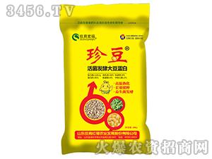 活菌发酵大豆蛋白-珍豆