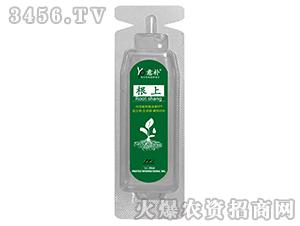 叶面肥针剂-根上-住商