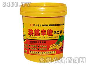 20kg块茎丰收活力素-慧博农业