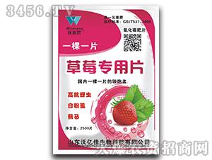 草莓专用片-一棵一片-沃亿佳