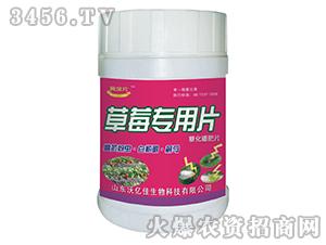 高抗蚜虫・白粉虱・蓟马型一棵一片(草莓专用)-沃亿佳