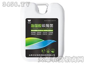 海藻酸碳酶菌-沃尔优