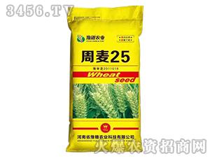 周麦25-小麦种子-豫穗农业