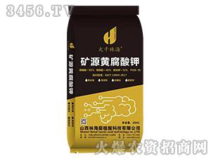 矿源黄腐酸钾-大千林海-林海腐植酸