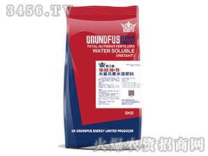 大量元素水溶肥料10-52-10+TE-格兰富