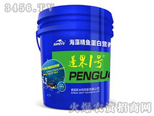 海藻精鱼蛋白营养液-蓬果一号-五谷丰