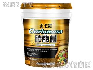 碳酶菌-迈卡露-天旗肥业