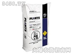 大量元素水溶肥料19-19-19+MgO+C+H+TE-禾力丰-壮禾