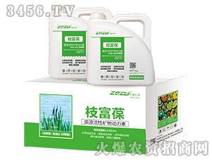 藻源活性矿物动力素-枝富葆-壮禾