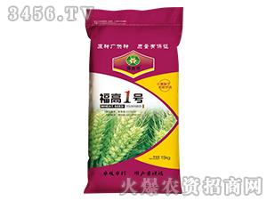 福高1号-小麦种子-豫鑫博