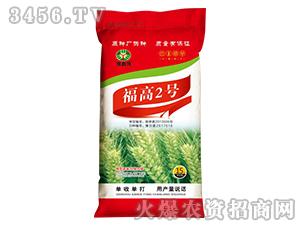 福高2号-小麦种子-豫鑫博