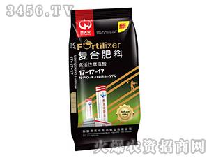 高活性腐植酸复合肥料1
