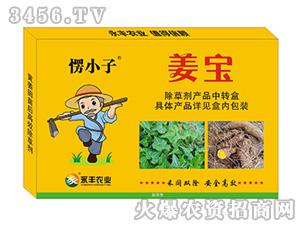 姜宝-愣小子-永丰农业