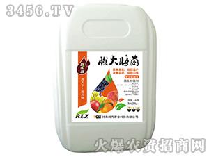 20kg微生物菌剂-膨