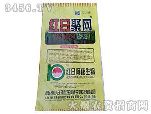 豆蛋白·豆肽酶-红日聚网-住高肥料