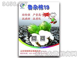 棉花种子-鲁杂棉19-恒创种业