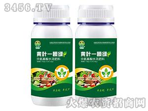 含氨基酸水溶肥料-黄叶一喷绿-丰尔利