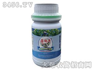 万寿菊专用叶面肥-藻施丰-智领生物