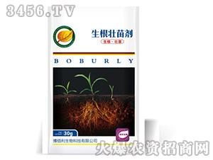 生根壮苗剂-亨泰农业