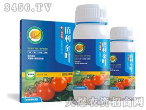 番茄专用肥-佰利金叶-