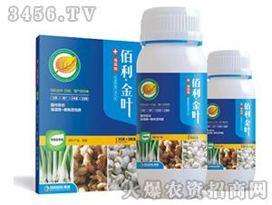 葱姜蒜专用肥-佰利金叶