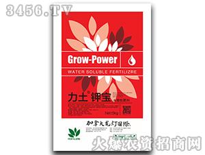 5kg水溶性肥料-力土钾宝-龙灯