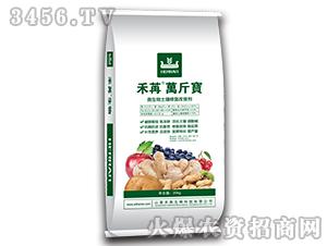 微生物土壤修复改良剂-禾苒万斤宝